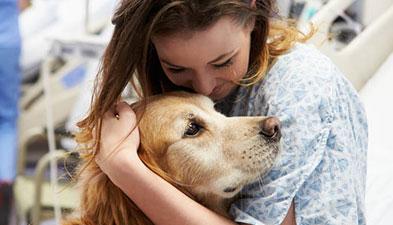 Pet therapy, all'Istituto Superiore di Sanità si lavora per metodologie strandardizzate
