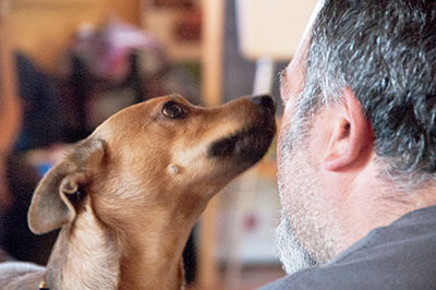 Corso Pet Therapy 2014